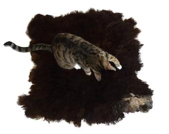 Cat Bed Hand Felted Wool Fleece Sheep-friendly Rustic Pet Rug- Navajo Churro Black/Brown Lamb - Supporting American Small Farm