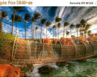 SALE 20% OFF Atlantis Rope Bridge and Palm Trees, Travel Photography, Bahamas, Blue Sky, Morning, Caribbean Landscape photograph, Exotic, Ar
