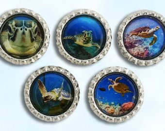 Sea Turtle, ocean, sea life, bottle cap magnets