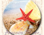"Seashells button. 2.25"" round pin back button, magnet, pocket mirror, keyring/bottle opener"