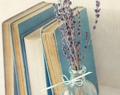 Book Photography- Vintage Books and Lavender Photo, Blue Lavender, Library Decor, Office Decor, Books and Flower Still Life Print, Book Art