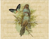 Blue birds Butterfly instant digital download image clip art  for iron on fabric transfer decoupage paper burlap pillow totebag No. 2287