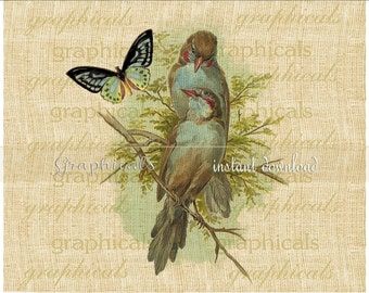 Blue birds Butterfly instant graphic download image clip art for paper decoupage iron on fabric transfer burlap pillow totebag No. 2287