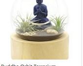 Buddha orbit