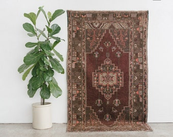 DEMIR 4x8 Hand Knotted Turkish Wool Rug