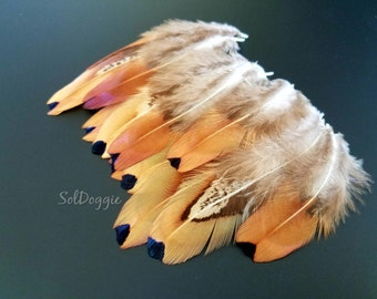 Small Feathers Real Feathers DIY Craft Supplies Natural Pheasant Feathers DIY Supplies Craft Feathers- 12
