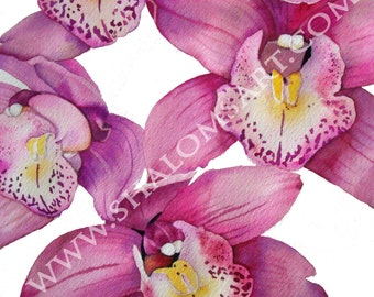 Care Orchid Watercolor Painting 5x7 Print