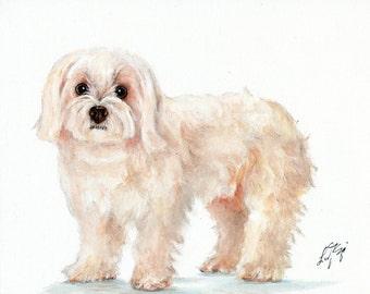 Original Oil Art MALTESE WHITE Portrait Painting Artist Signed Artwork Puppy Dog