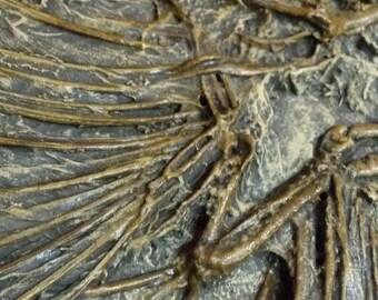DarksideArt's Archaeopteryx Pseudo Fossil Sculpture