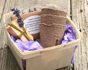 Lavender Plant Kit, Heirloom Lavender Seeds, Great Gift for Mom or Hostess Gift, Garden Basket