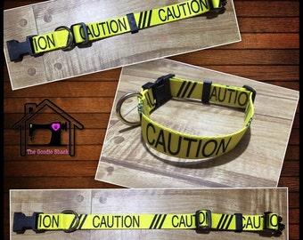 Caution Flat Dog Collar