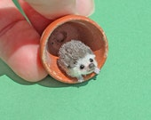 OOAK Dollhouse Miniature Gumbo Hedgehog 1:12 scale ~ Handmade by Katie Doka
