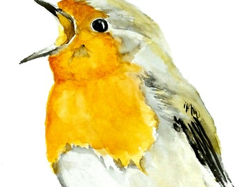Robin Watercolor Painting /Wild life art/Original robin watercolour painting