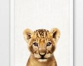 Lion Print, Cute Lion Cub Photo, Safari African Animals Photography, Nursery Wall Art, Baby Animal Color Photo Print, Kids Room Decor, DIY