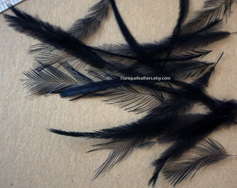Black Emu Feathers Cruelty Free Feathers Black Craft Feathers Black Feathers for Accessories Hats Caps Accents Black Emu Feathers, 20