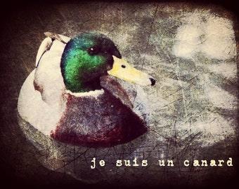 je suis un canard