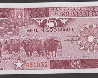 Somalia Banknote 5 Shillin 1983 Gem UNC Pick # 31a