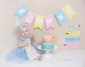 FOR KARINA ONLY - Vintage Style Alice In Wonderland Dress
