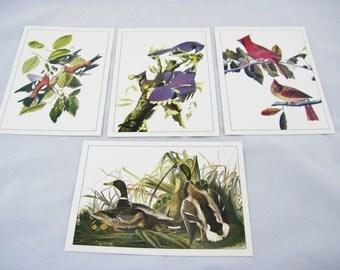 John James Audubon Lithographs from New York Historical Society Cardinal, Mallards, Blue Jay, White Winged Crossbill