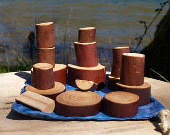 Woodland Blocks, Waldorf Inspired Imaginative Play Blocks Set of 16. Madrone Wood.