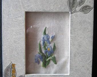 Purple Iris in Crewe; Wall Decor