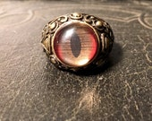 Red and Gold Shark Eye Competition Level Hand Painted Taxidermy Glass Eye Bronze Ring