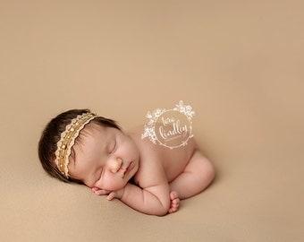 Newborn Photography Fabric Backdrop -  Dakota Knit Backdrop -  2 Yards