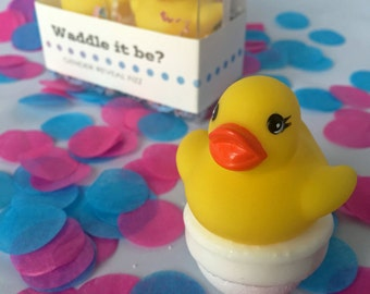 Waddle It Be? Gender Reveal Fizz with Rubber Duck: one pink, one blue