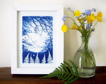 Fern Forest Cyanotype Blue and White Nature Photography