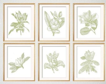 Green Botanical Print Set of 6, Magnolia Prints, Magnolia Illustrations, Traditional Living Room Decor, Green and White Art, Magnolia Prints