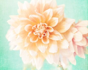 Flower Photography - Peach Flower Print - Floral Wall Art - Botanilcal Photography - Living Room Decor - Bay Girl Nursery