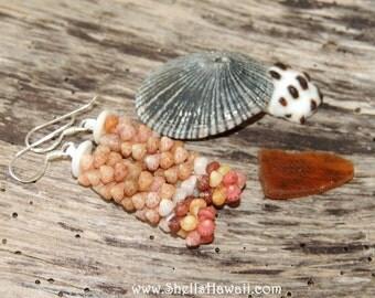 Kahelelani poepoe style shell earrings