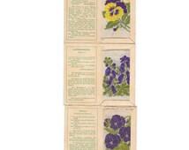 Kensitas Silk Cigarette Cards (3) Flowers Purple 1930s. Viola, Monkshood, Pansy.