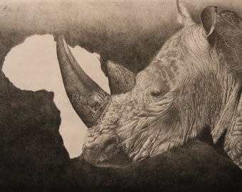 The Rhino -graphite drawing