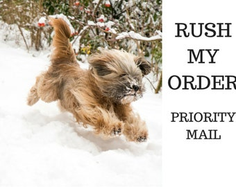 PRIORITY MAIL SHIPPING - Upgrade To Your Order With MountainUrsusDesigns