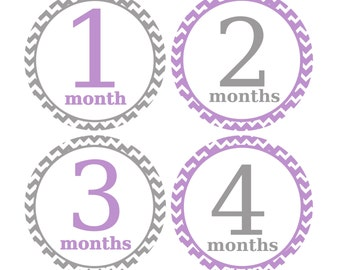 Girl Month Stickers, Babys First Year Stickers, Set of Month to Month Stickers