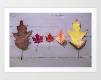 Autumn Leaves, Fall Leaves, Autumn Print, Fall Print, Colorful Leaves, Wood Floor, Maple Leaf, Fall Picture, Orange Leaf, red Leaf, Brown