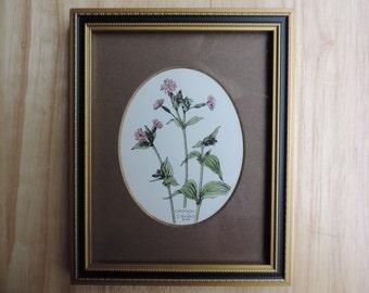 Vintage floral watercolor by John Morland, Glastonbury Prints