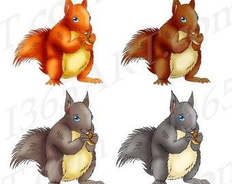 50% off sale Squirrels Clipart, Squirrel Clip art, Wildlife Clipart, Graphics, Scrapbooking, Digital, Hand Drawn, Illustrations, PNG JPEG, C
