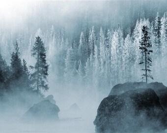 Winter Forest Body Mist, Room and Linen Spray  4 oz Fresh Body Mist, Body Spray, Woodsy Body Mist, Holiday Room Spray