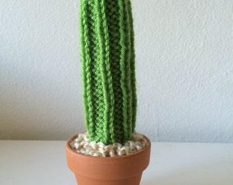 Mini Knit Cactus - tall and skinny variety