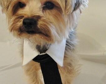 Dog Wedding Collar, Pet Wedding Clothes, Dog Black Tie Collar, Pet Wedding Attire, Wedding Dog Clothes, Chihuahua Clothes, Ferret Clothes