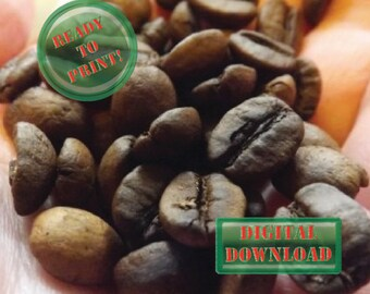 Roasted Coffee Beans Printable Food Photograph Instant Download File