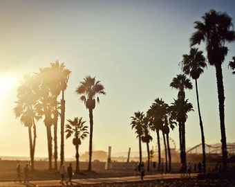 Santa Monica Beach Sunset California Seaside Ocean Surf Summer Palm Trees Boardwalk Los Angeles