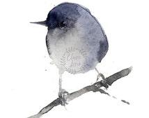 "Watercolour Bird Painting PRINT - Signed Watercolour Bird Giclee Print from Original Animal Painting - Gift - Nursery Art - 5x5"" or 5x7"""