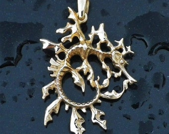 Leafy Sea Dragon necklace , solid gold double sided pendant.