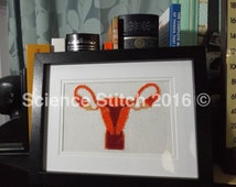 Anatomical Female Reproductive System CrossStitch, Uterus, Cervix, Ovaries, Fallopian Tubes- Handmade and Framed! Great for display or gift!