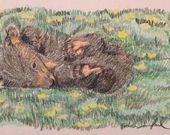 Original Bear Cub Drawing