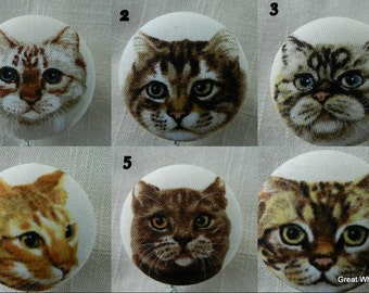 Tabby Cats~ Retractable ID Name Badge Holder Reel