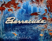 Blue Plymouth Barracuda Logo Photograph